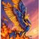 Phoenix Card back